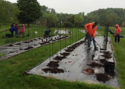 Neither rain nor snow . . . stops planting at the Nordahl Exhibition Garden in Derwood MD.