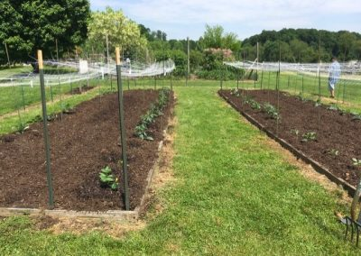 Planting Day at the Mid-Atlantic Trial Garden